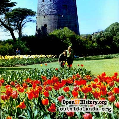 Dutch Windmill and Tulips, circa 1970