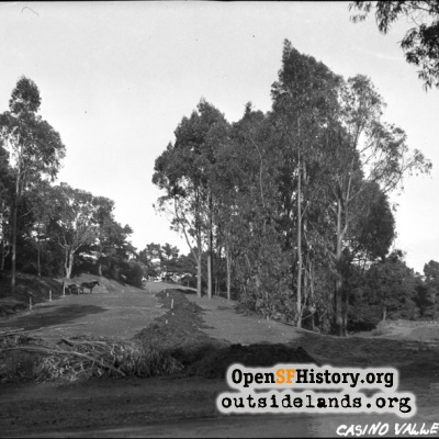 Golden Gate Park Construction, Casino Valley