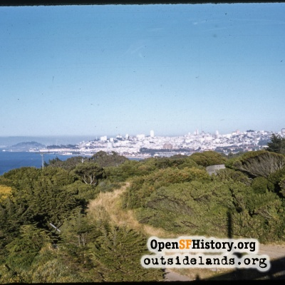Skyline from Presidio