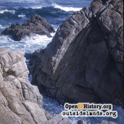 Point Lobos?