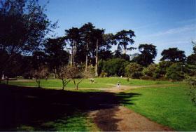 Strybing Arboretum Western Neighborhoods Project San