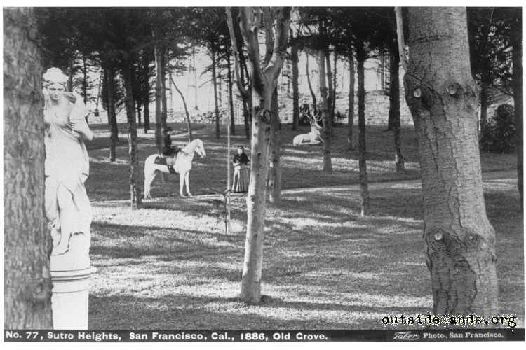 Sutro Heights. View of statues in Old Grove with horseback rider