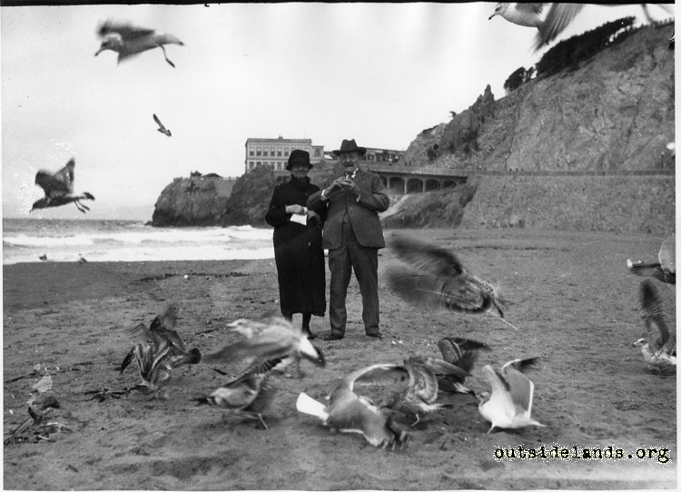 Ocean Beach visitors feeding sea gulls