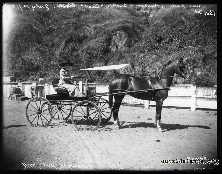Mrs. Jack Johnson in horse drawn buggy