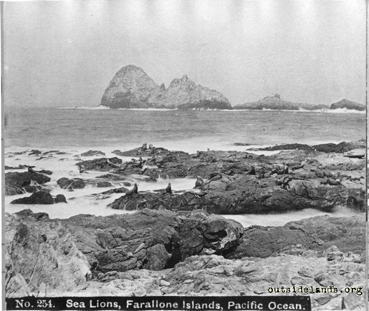 Farallon Islands.