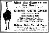 Ad for Ostrich Farm, 1913